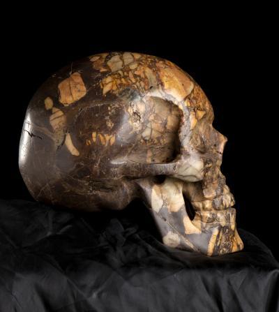An Italian Figurative Sculpture Head of Skull Carved in Specimen Marble Breccia
