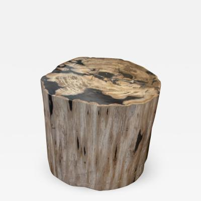 Andrianna Shamaris SUPER SMOOTH PETRIFIED WOOD COFFEE TABLE OR SIDE TABLE