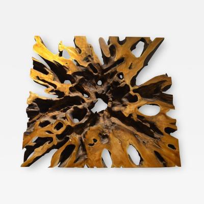 Andrianna Shamaris Teak Root Wall Art or Coffee Table Top