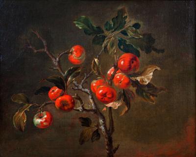 Antoine Berjon 1754 1843 spray of apples