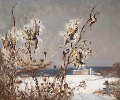 Arthur Meltzer Milkweed in Winter