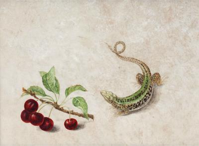 Barbara Regina Dietzch Salamander with Branch of Cherries