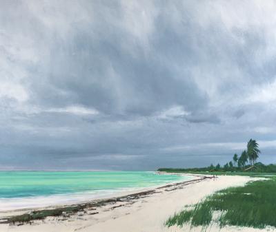 Ben Bauer Sandspur Beach Florida