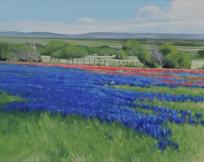 Ben Bauer Texas Spring
