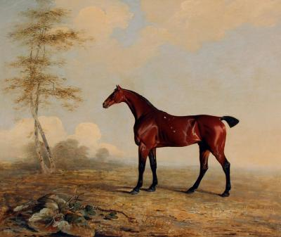 Benjamin Marshall Phosphorus in a Landscape