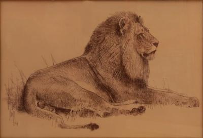 Bob Kuhn Recumbant African Lion