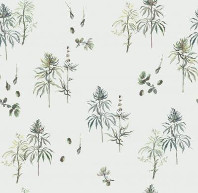 Botanical Weed Babys Breath