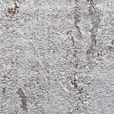 Brenda Houston Silver on Silver Cork Wallcovering