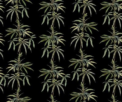 Brett Design Botanical Ganja On Black