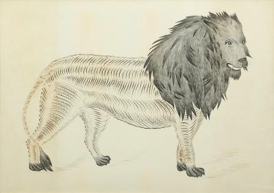 Calligraphy Drawing of a Lion
