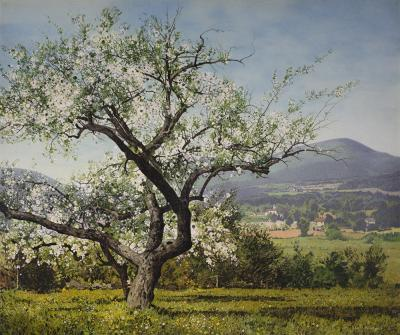 Carl Wuermer Apple Blossoms