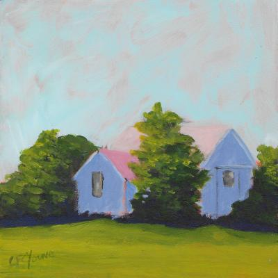 Carol C Young HIDDEN SHED