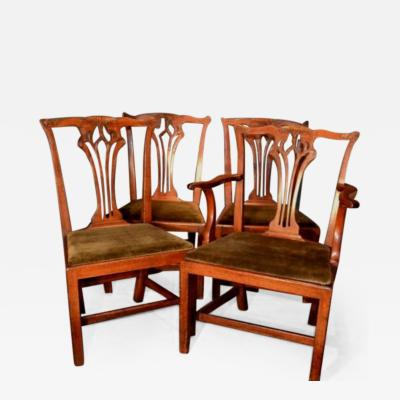 Carved Chippendale Period Mahogany Chairs