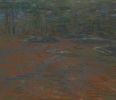 Charles Salis Kaelin Field 1