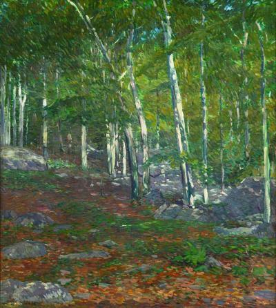 Charles Salis Kaelin Summer Kaelins Woods