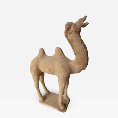 Chinese Archaic Tang Dynasty Clay Camel