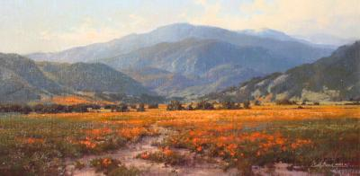Cindy Baron Poppies and Mountain Air
