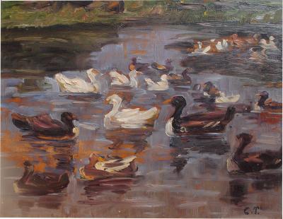 Clovis Terraire Clovis Terraire Ducks on a Pond