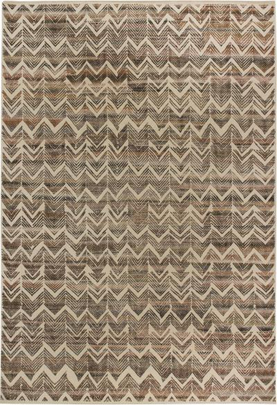 Contemporary High Low Pile Rug