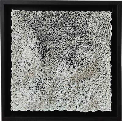 Coralie Laverdet Areg Lunaire II