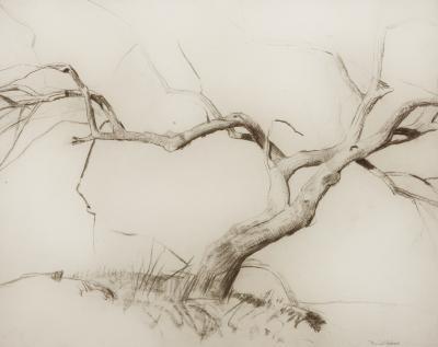 Daniel Garber Bare Tree