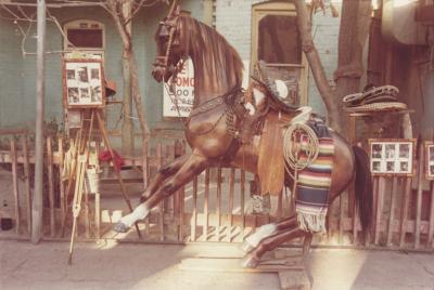 Danny Lyon Juarez Mexico cover photo for The Paper Negative 1980
