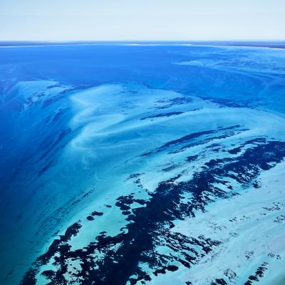 David Burdeny Shark Bay Australia