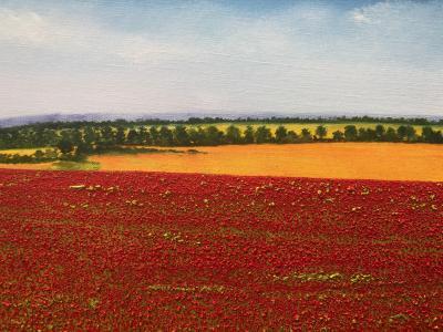 David J Williams A Sea Of Poppies
