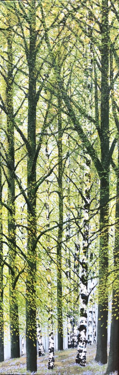 David J Williams Spring Birches