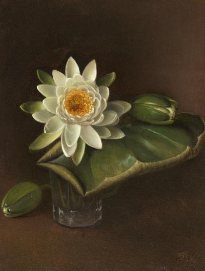 David Johnson Still Life with Water Lily