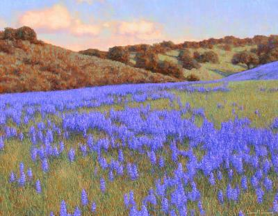 Dennis Doheny Monterey Lupines