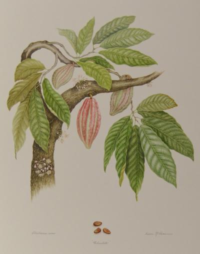 Dianne McElwain Chocolate Tree