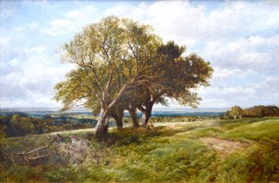 Edmund Morison Wimperis On the South Downs 19th Century English Landscape Oil Painting