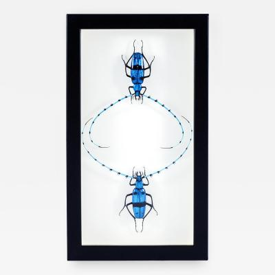 Emanuel Toffolo Murano Glass Pair of Scarabs