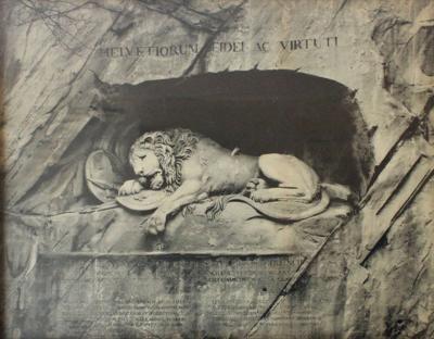 Framed Lion Print