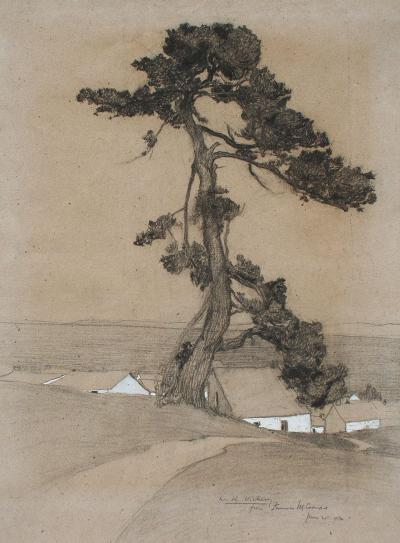 Francis John McComas Cypress Tree and House