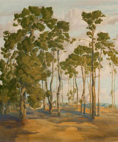 Francis John McComas Monterey Pines