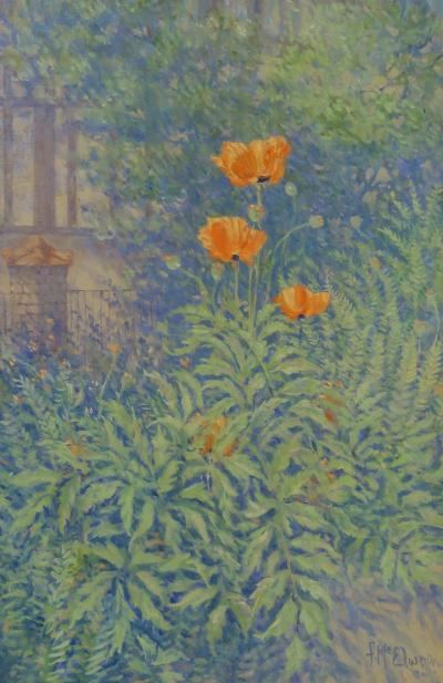 Frank McElwain Poppies
