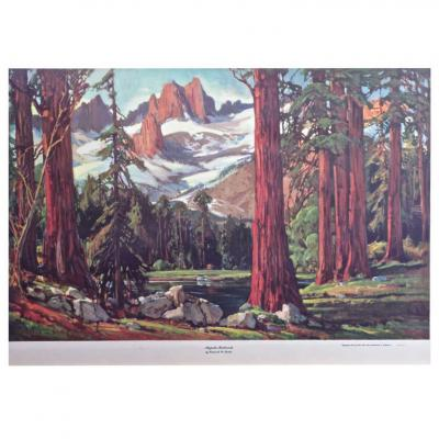 Frederick W Becker Majestic Redwoods Lithograph by Frederick W Becker circa 1952