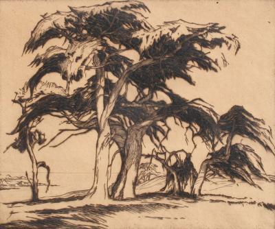 Gene Alice Geneva Glasier Kloss Old Cypress Tree