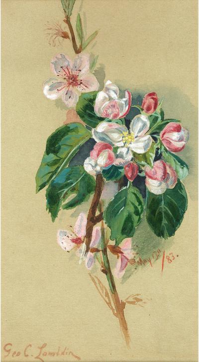 George Cochran Lambdin Floral Still Life