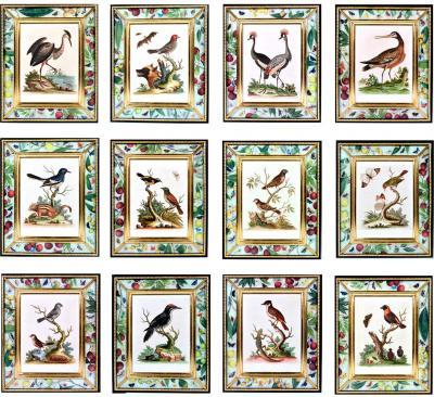 George Edwards 18th Century George Edwards Engravings of Birds a Set of Twelve