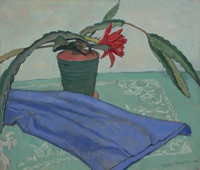 Gershon Benjamin Flowering Cactus