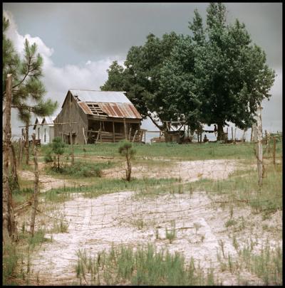 Gordon Parks Untitled Shady Grove Alabama Boys Fishing 37 048 1956