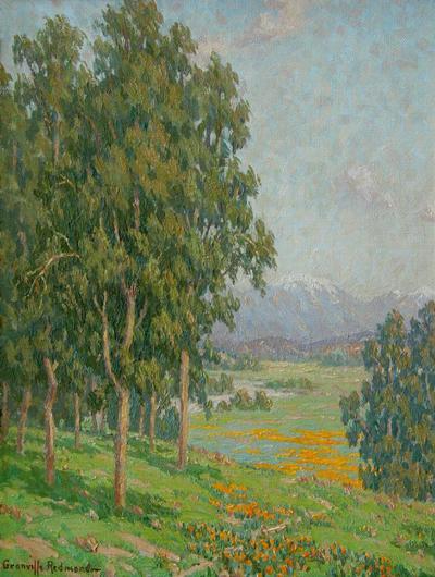 Granville Seymour Redmond California Wildflowers