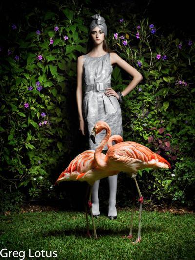 Greg Lotus Flamingo