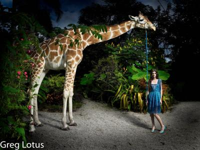 Greg Lotus Giraffe