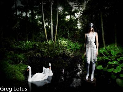 Greg Lotus Swans