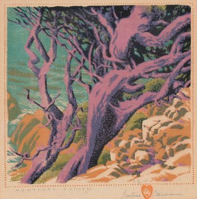 Gustave Baumann Monterey Cypress