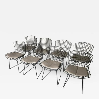 Harry Bertoia A Set of Eight Vintage Chairs by Harry Bertoia for Knoll